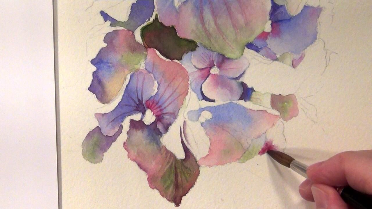 Watercolor Painting Dvd Paint Stunning Watercolor Flowers For