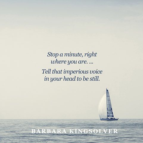 Quote About Relaxing Destress Quotes Barbara Kingsolver Quote Relax Quotes 10th Quotes Love Me Quotes