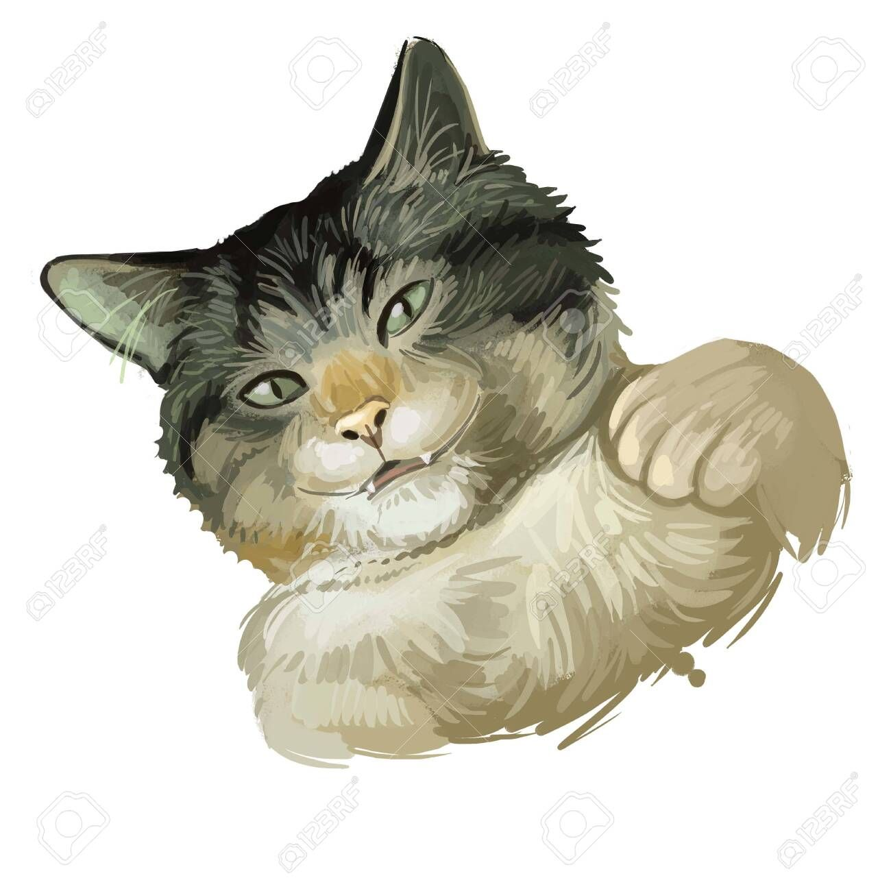 Dragon Li Or Chinese China Li Hua Cat Isolated On White Digital Art Illustration Of Hand In 2020 Digital Art Illustration Illustration Art Material Design Background