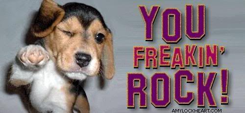 You Freakin Rock Dog Rocks Pet Rocks Animals