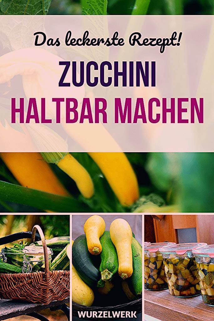 Photo of Zucchini einmachen – Zucchinischwemme haltbar machen! – Wurzelwerk