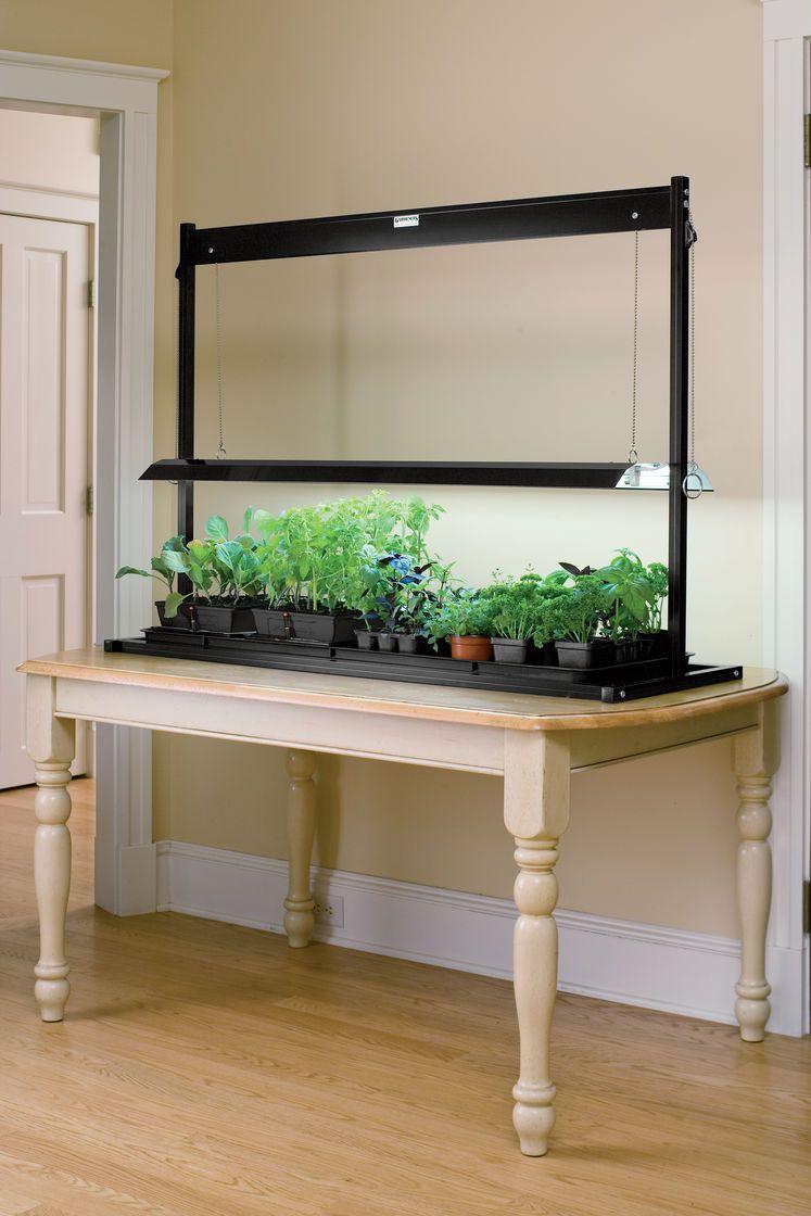 Best Led Grow Lights Herbs