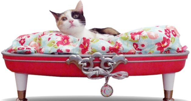 Check out these amazing, recycled, vintage suitcase pet beds from @UniquePetBeds : http://www.pauseandplay.co.uk/excess-baggage-suitcase-pet-bed/
