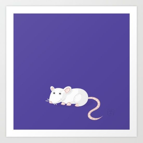 Rat - $16