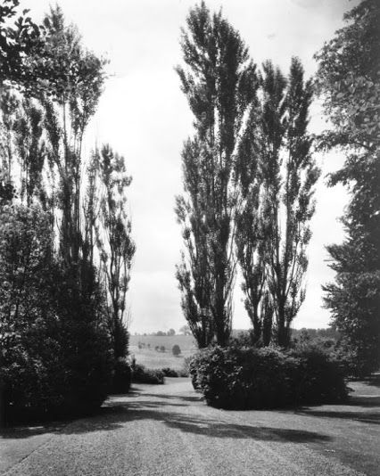 Fletcher Steele Designed Blossom Hill The Estate Of Grahame Wood Wawa Pa Ca 1914 Photo By P Landscape Architect Landscape Design Modern Landscape Design