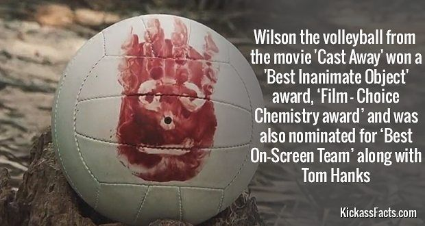 #wilson #castaway #tomhanks #volleyball