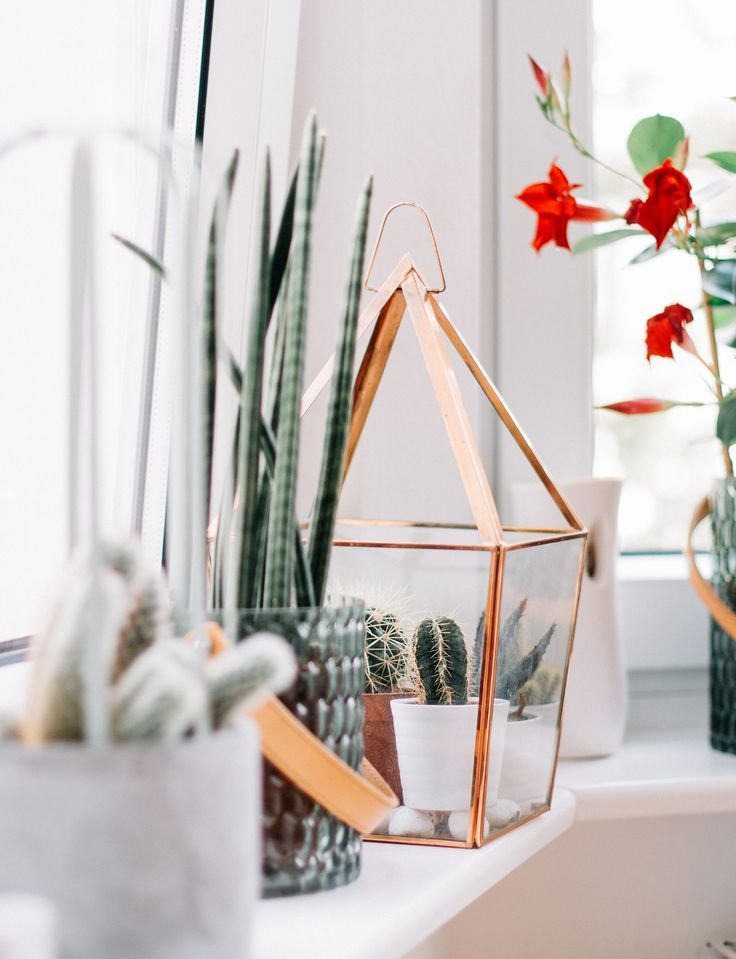 kupfer  grün Plants Pinterest Interiors and Room