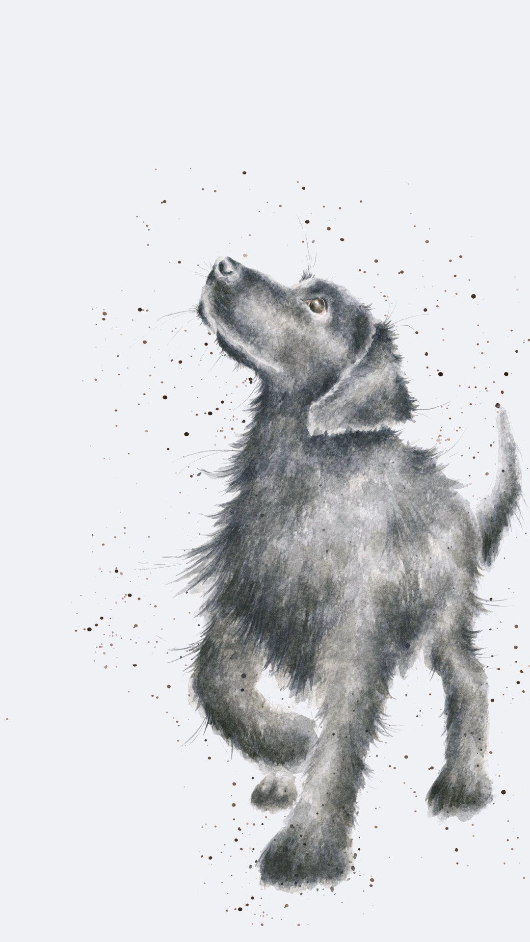 Dog Phone Wallpaper
