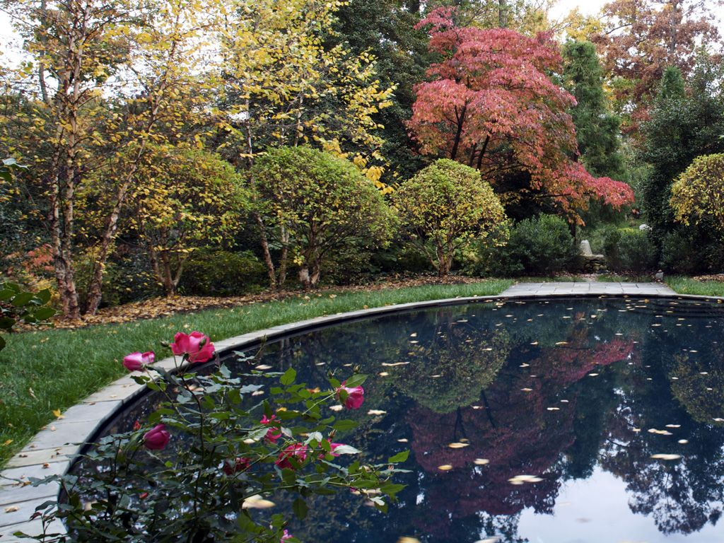 Graham Landscape Architecture › Projects › Residential