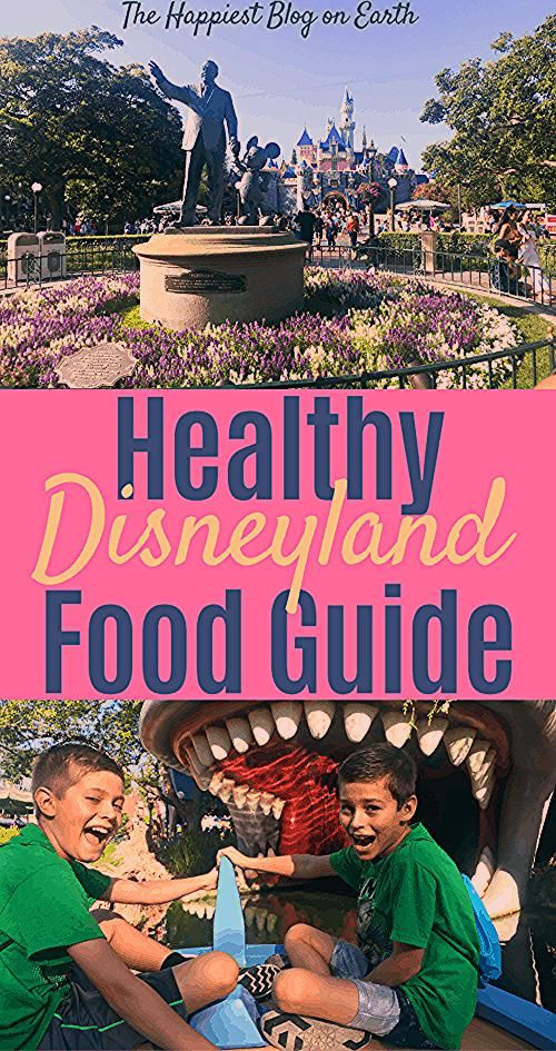 Photo of Healthy Disneyland Food | Happiest Blog on Earth