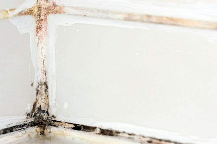 Mold In Shower Room how does steam cause mold in your bathroom? | shower mold and grout