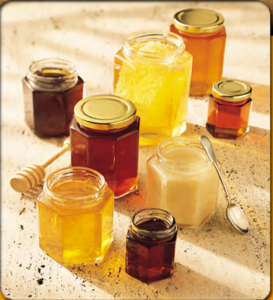 "FREE ""Better Bee Honey Recipes"" ebook"