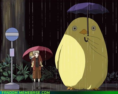 Awww, I love this!!! <3 <3 <3 Gilbird as Totoro, and Prussia holding