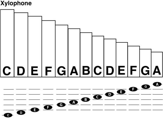 Xylophone Notes Diagram Wiring Data