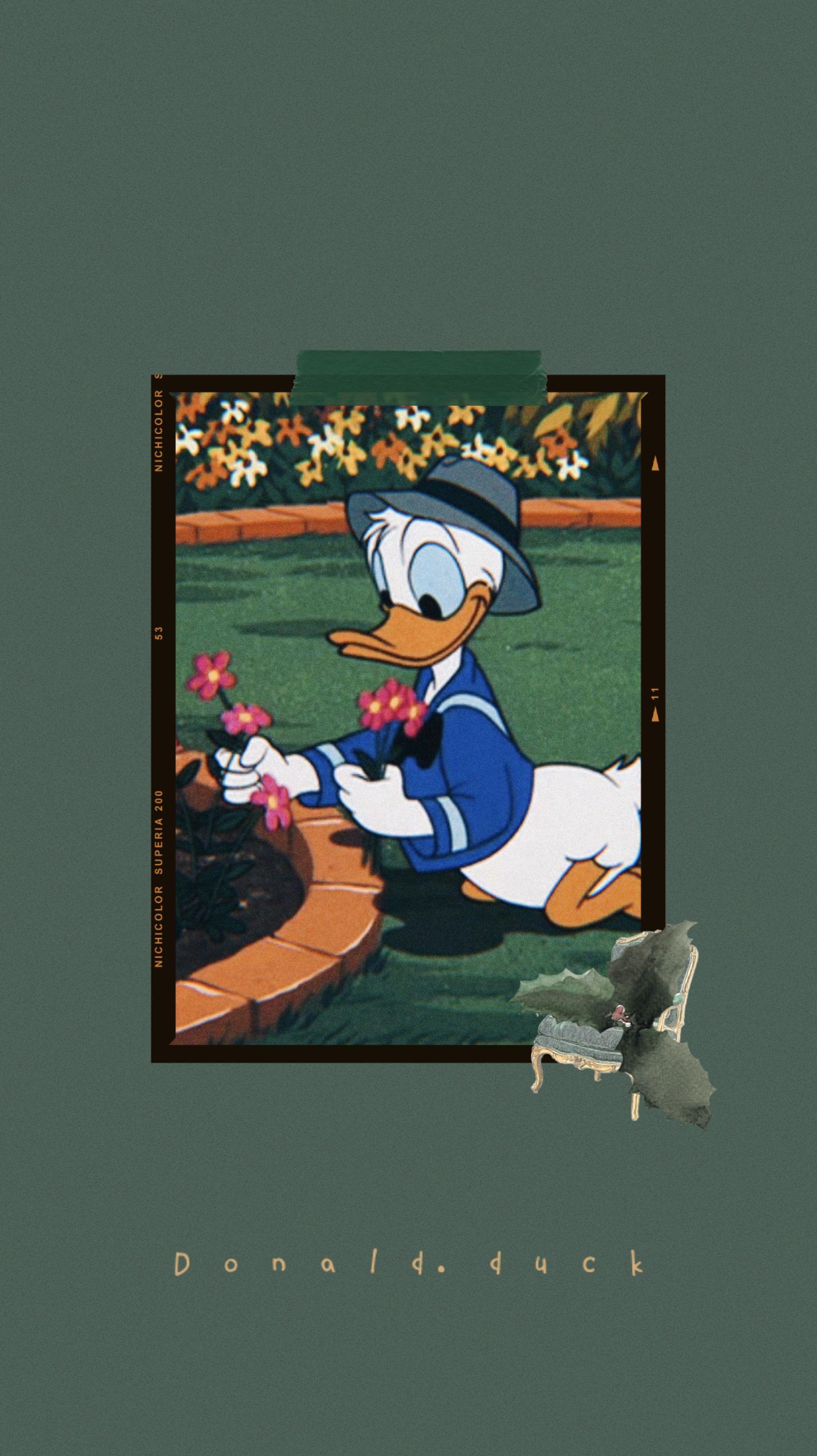 Donald Duck Wallpaper Aesthetic Duck Wallpaper Cartoon Wallpaper Cute Cartoon Wallpapers