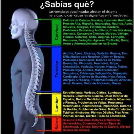 espasmos de espalda y dolor pélvico