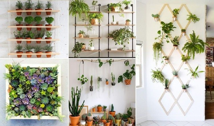 15 Amazing Diy Indoor Plant Wall Ideas With Tutorials That Can Easy Make Everyone Living Room Plants Boho Living Room Room With Plants