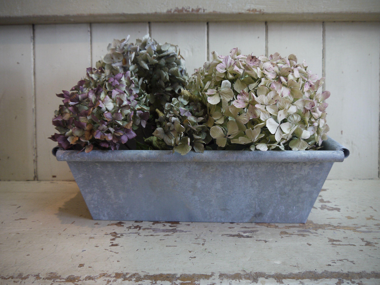 Vintage Garden Planter - Vintage Galvanised Zinc Planter - Vintage on zinc planter boackround on white, zinc furniture, zinc bowls, zinc window boxes, zinc garden statues,
