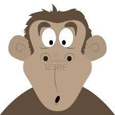mono sorprendido - Buscar con Google