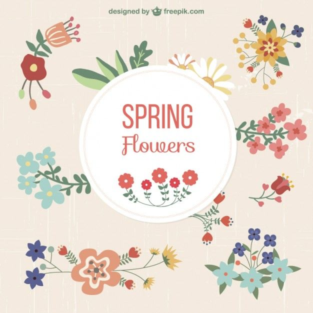 Floral set of graphic elements Free Vector floral flourishes