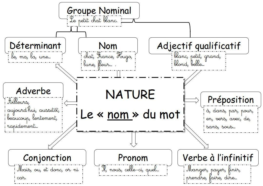 La nature des mots : le groupe nominal (exercices en ligne) | education | Pinterest | Exercice ...