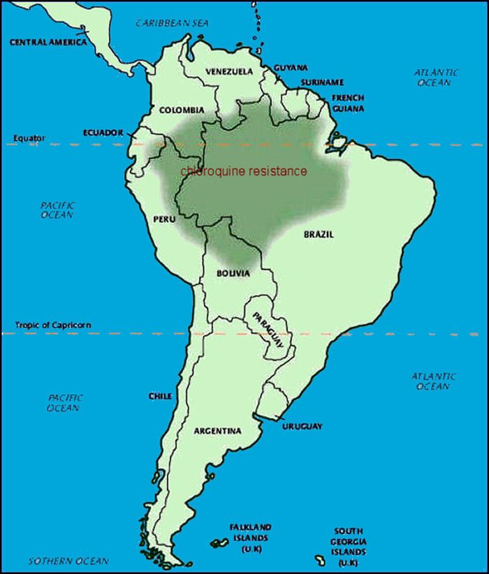 Where is the Parana River located?