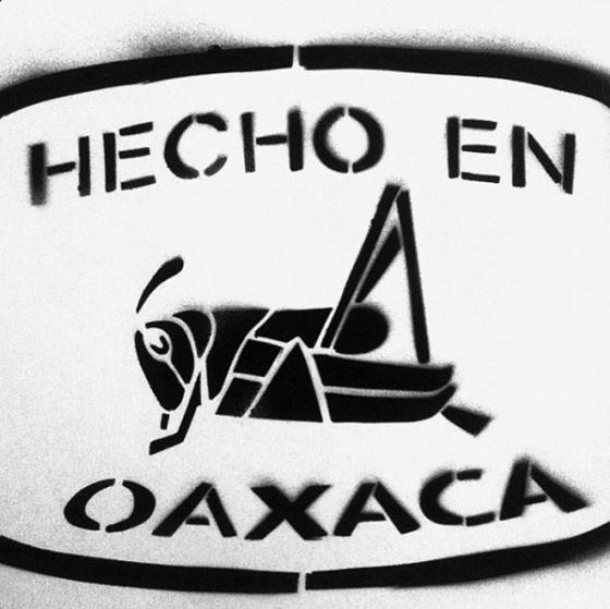 The chapaulin (edible grasshopper) in a cute play on Hecho en Mexico