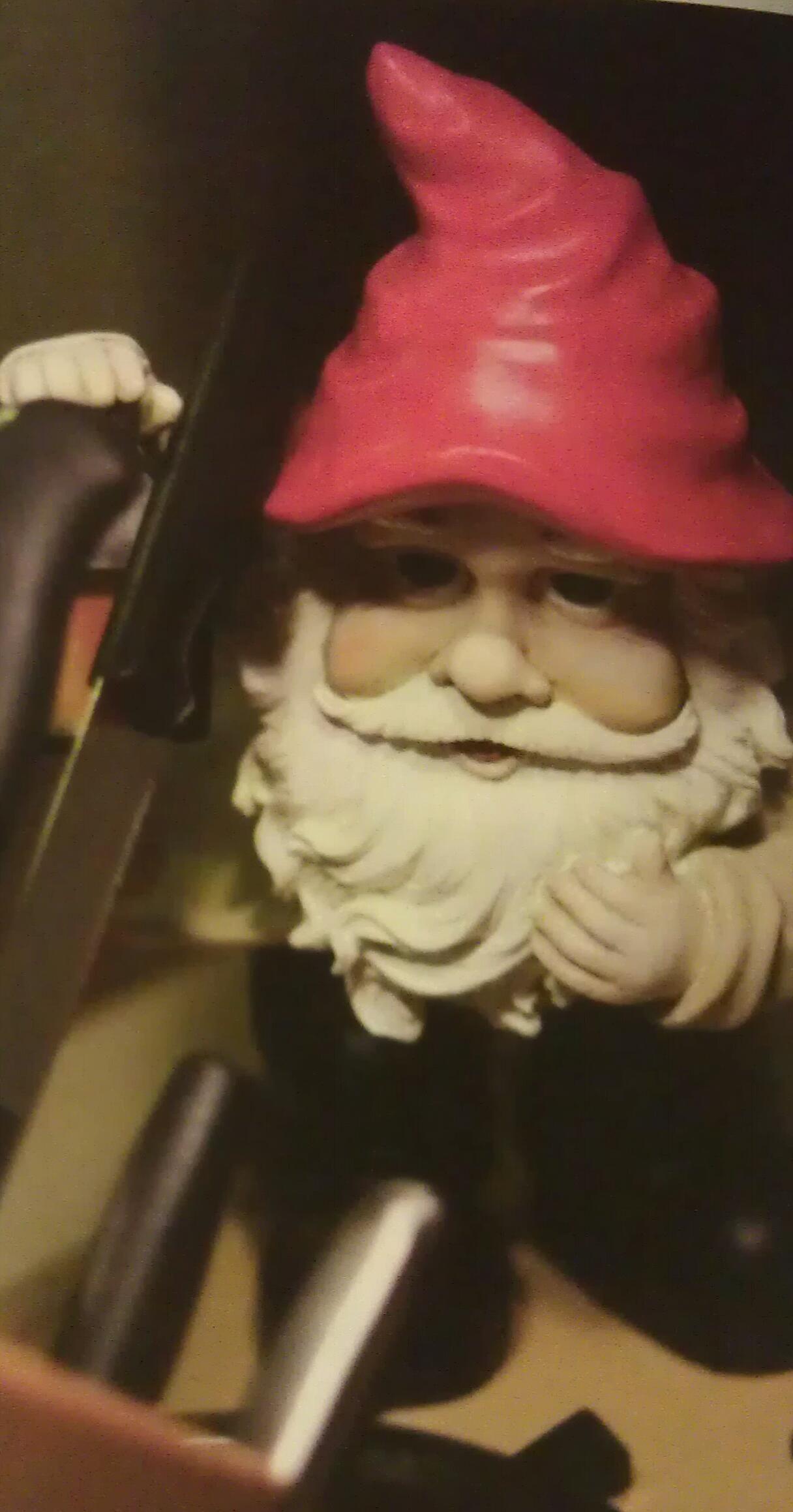 Stephen King gnome...my gnome Steve is different | Random Stuff ...
