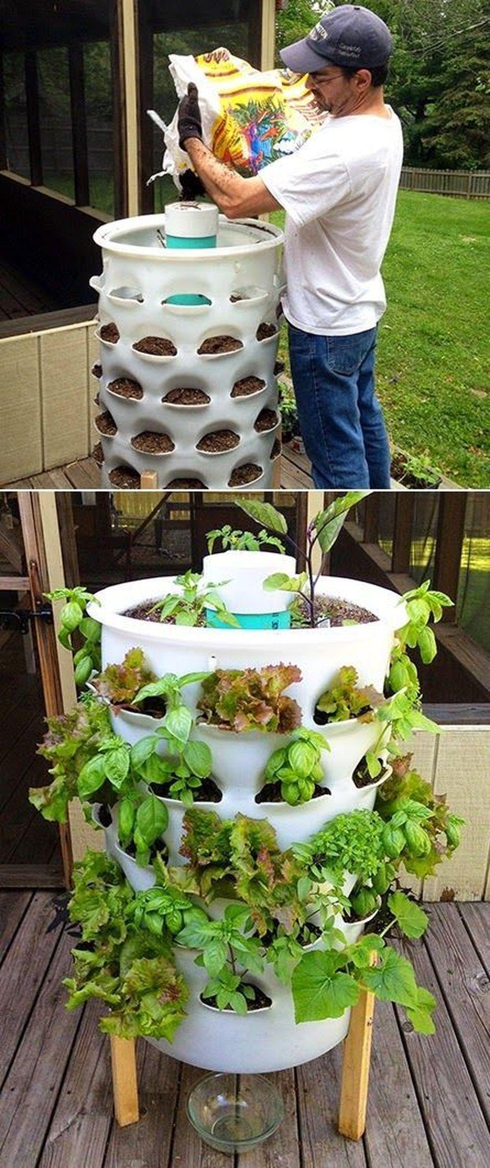 40 Inspiring Vertical Garden Ideas for Small Space ...