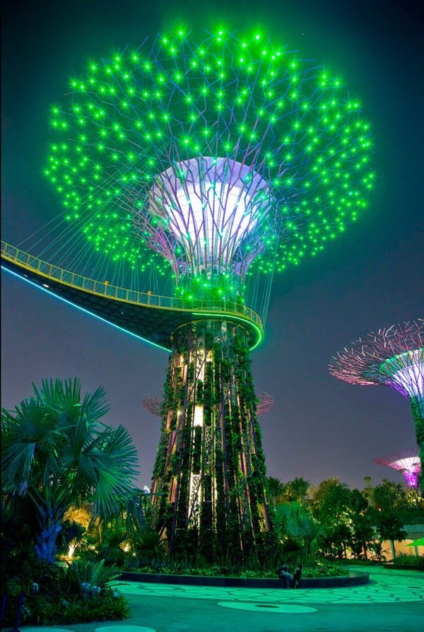 Garden By The Bay Attractions supertree gardensthe bay, singapore   asia   pinterest