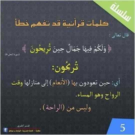 تريحون Islam Facts Quran Verses Arabic Language