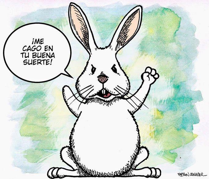 Resultado de imagen de pata de conejo