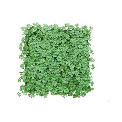 Winston Porter Greenery Boxwood Hedge In 2020 Artificial Hedges Artificial Topiary Garden Fence Panels