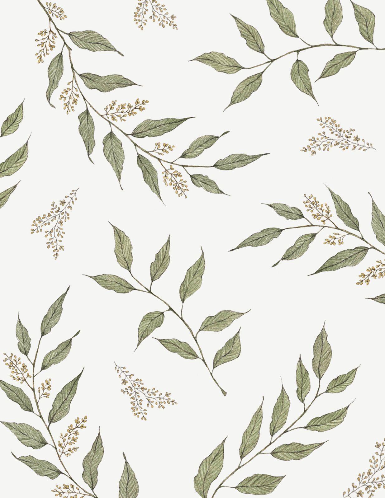 Finch & Fleur, paper goods, eucalyptus watercolor, eucalyptus pattern, botanical pattern