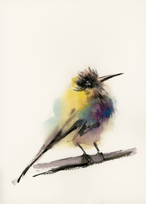 Hummingbird Painting Original Watercolor Paining Of Bird Bright