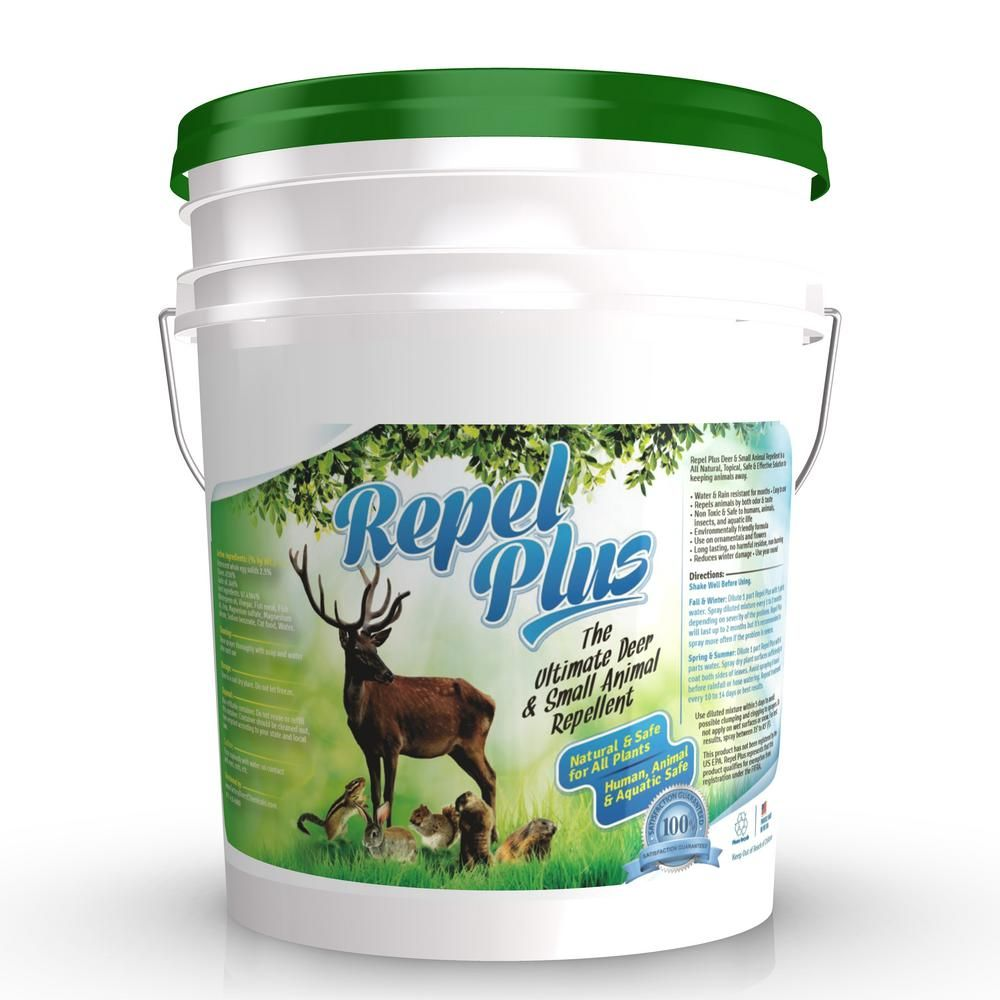 Eco clean 5 gal pail repel plus deer and small animal