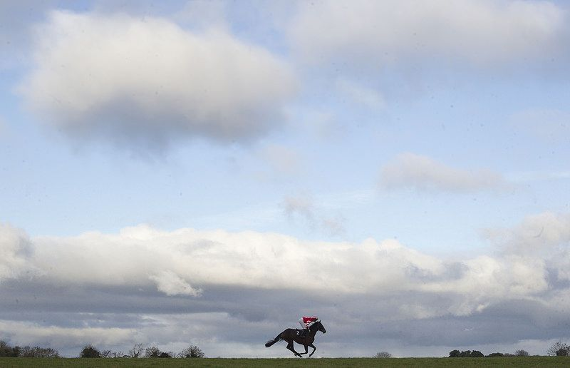 Tinakellylad (Martin Ferris) head to post before the Glen Chase Thurles Photo Patrick McCann 28.11.2013