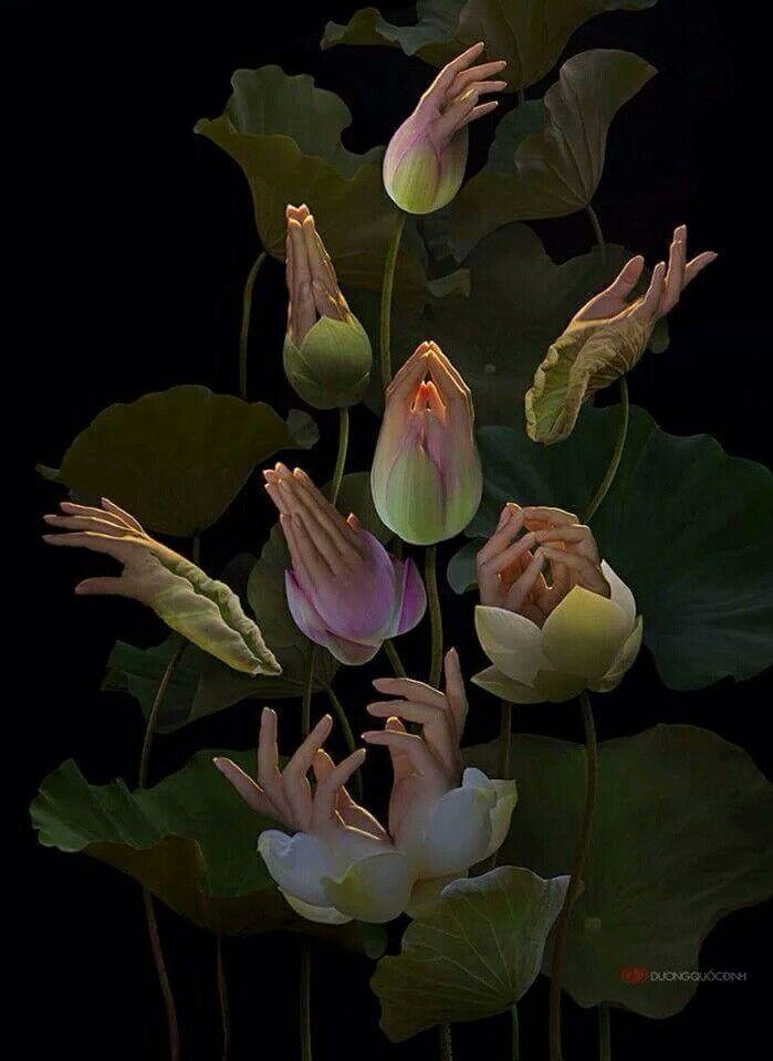 Mãos espelhos da alma.