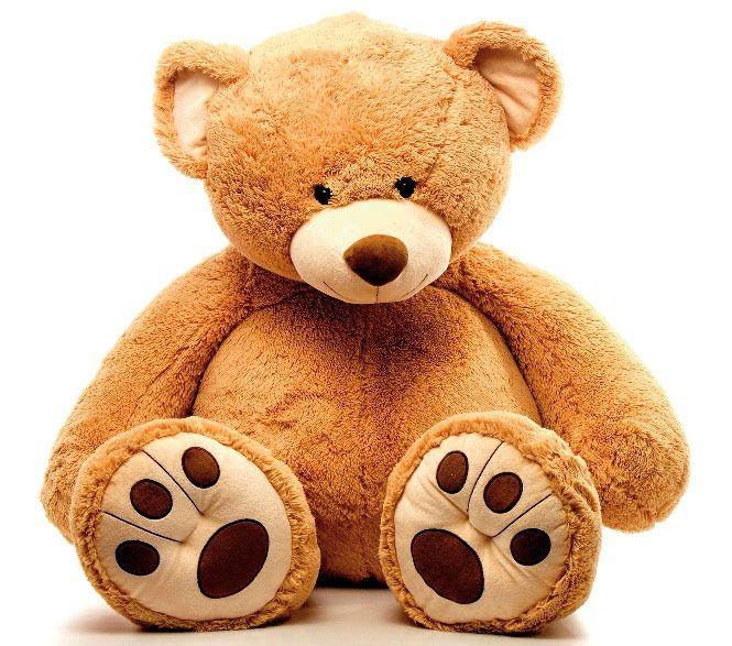 Peluche Ours Géant 140 cm Teddy bear, Bears and Toy