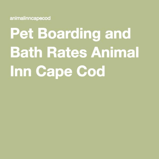 Pet Boarding and Bath Rates Animal Inn Cape Cod