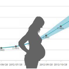 calcul du poids grossesse mois par mois imc femme. Black Bedroom Furniture Sets. Home Design Ideas