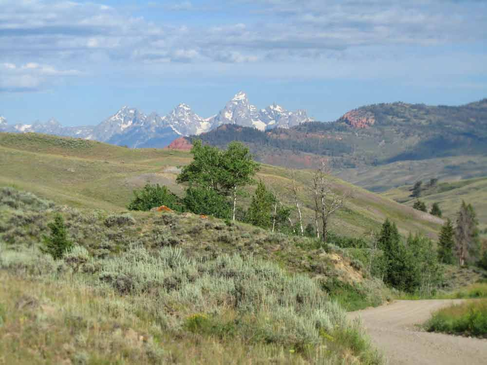 Tetons and the Road to Goosewing Ranch