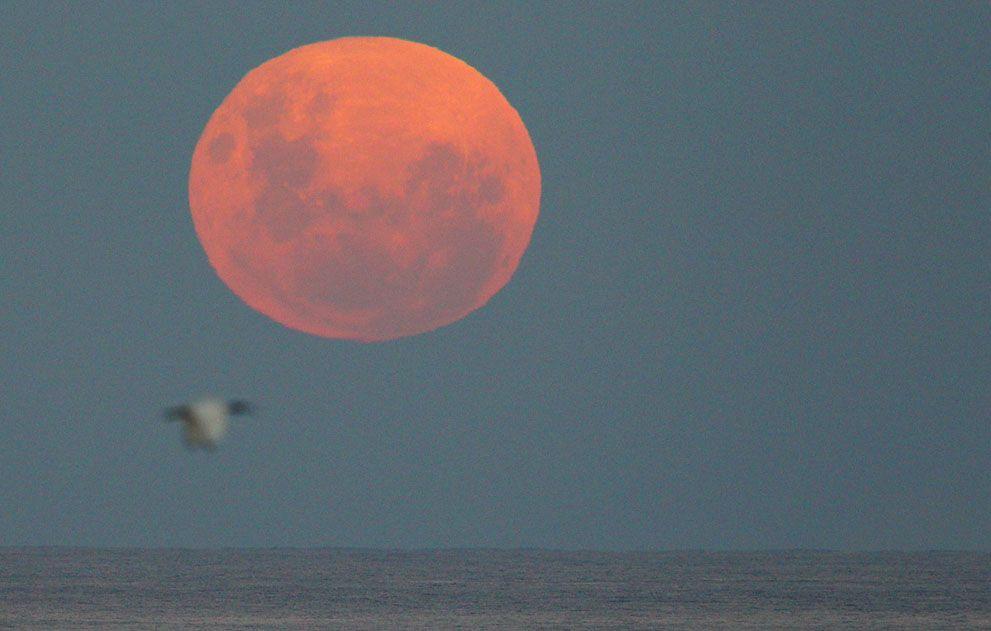 El supermoon se eleva sobre el océano Pacífico el 6 de mayo de 2012, visto desde Sydney, Australia. (Cameron Spencer / Getty Images) #