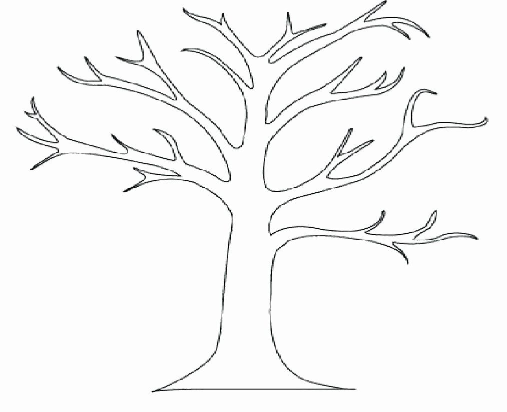 Coloring Coconut Tree New Palm Tree Coloring Sheets Reddogsheet Tree Coloring Page Tree Outline Leaf Coloring Page
