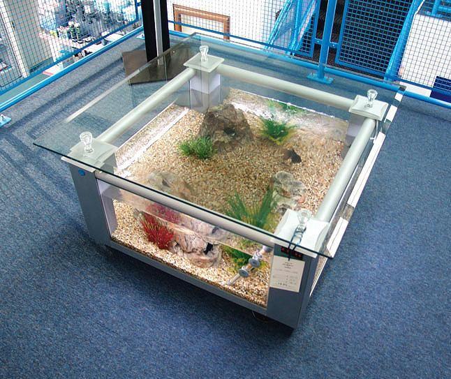 Tropical Fish Tank Coffee Table