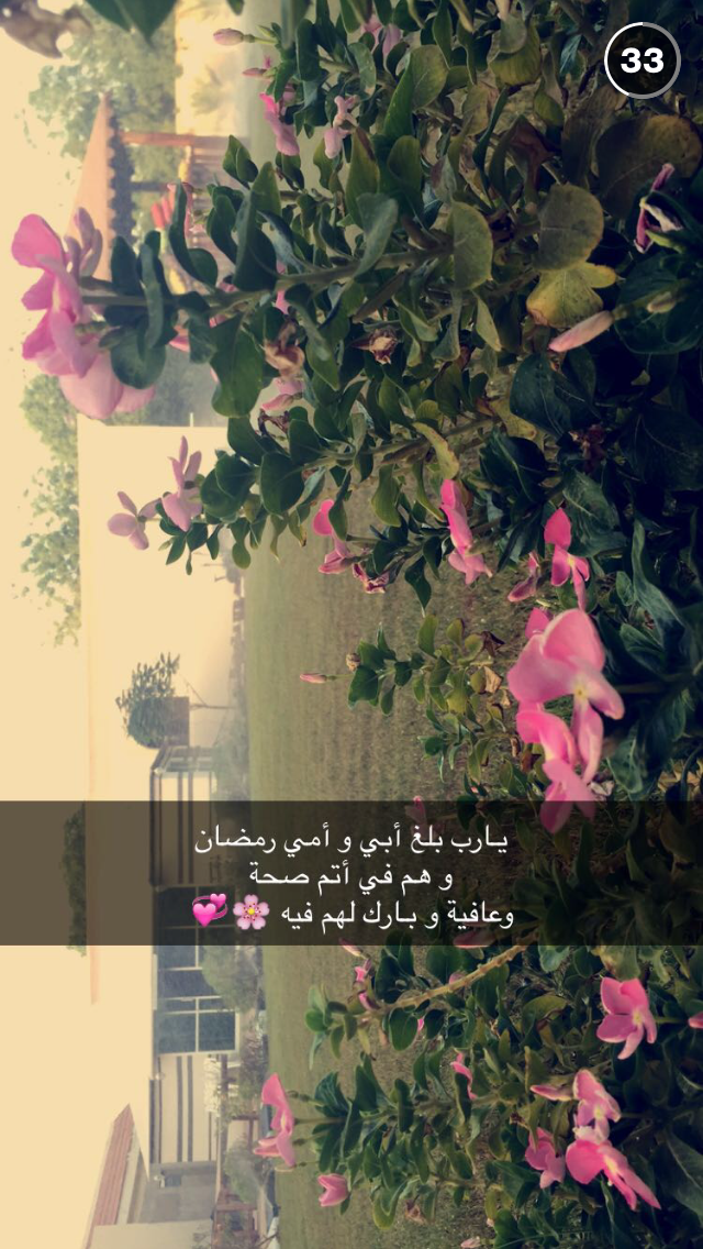 Pin By La Al On أمي الحبيبة Poster Movie Posters Snapchat