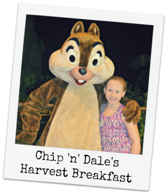 Dining Review Chip N Dale S Harvest Breakfast At Garden Grill