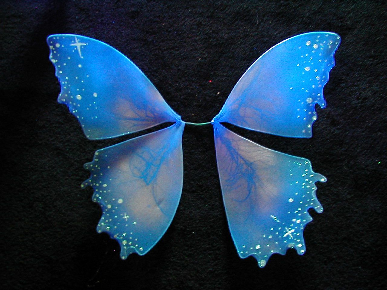 Fairy Wing Dark Fairy Faeries Glow Run