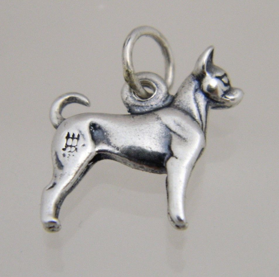 photo relating to James Avery Printable Coupons named JAMES AVERY STERLING SILVER RETIRED CHIHUAHUA Pet Enchantment