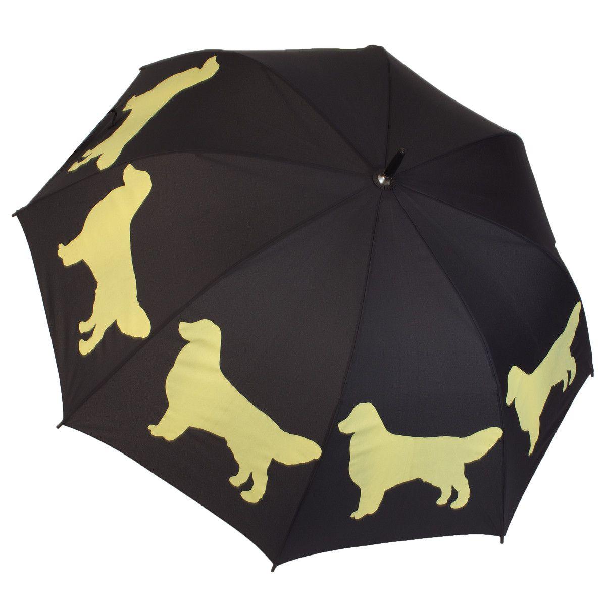 Golden Retriever Umbrella Golden retriever, Umbrella